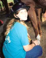 Volunteer For Horse Care Misty River Equestrian Center